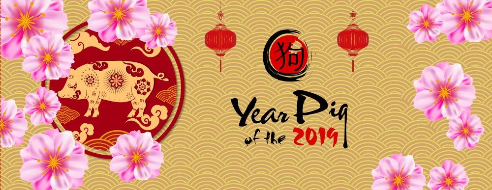 capodanno cinese anno del maiale Rigato prodotti dolciari