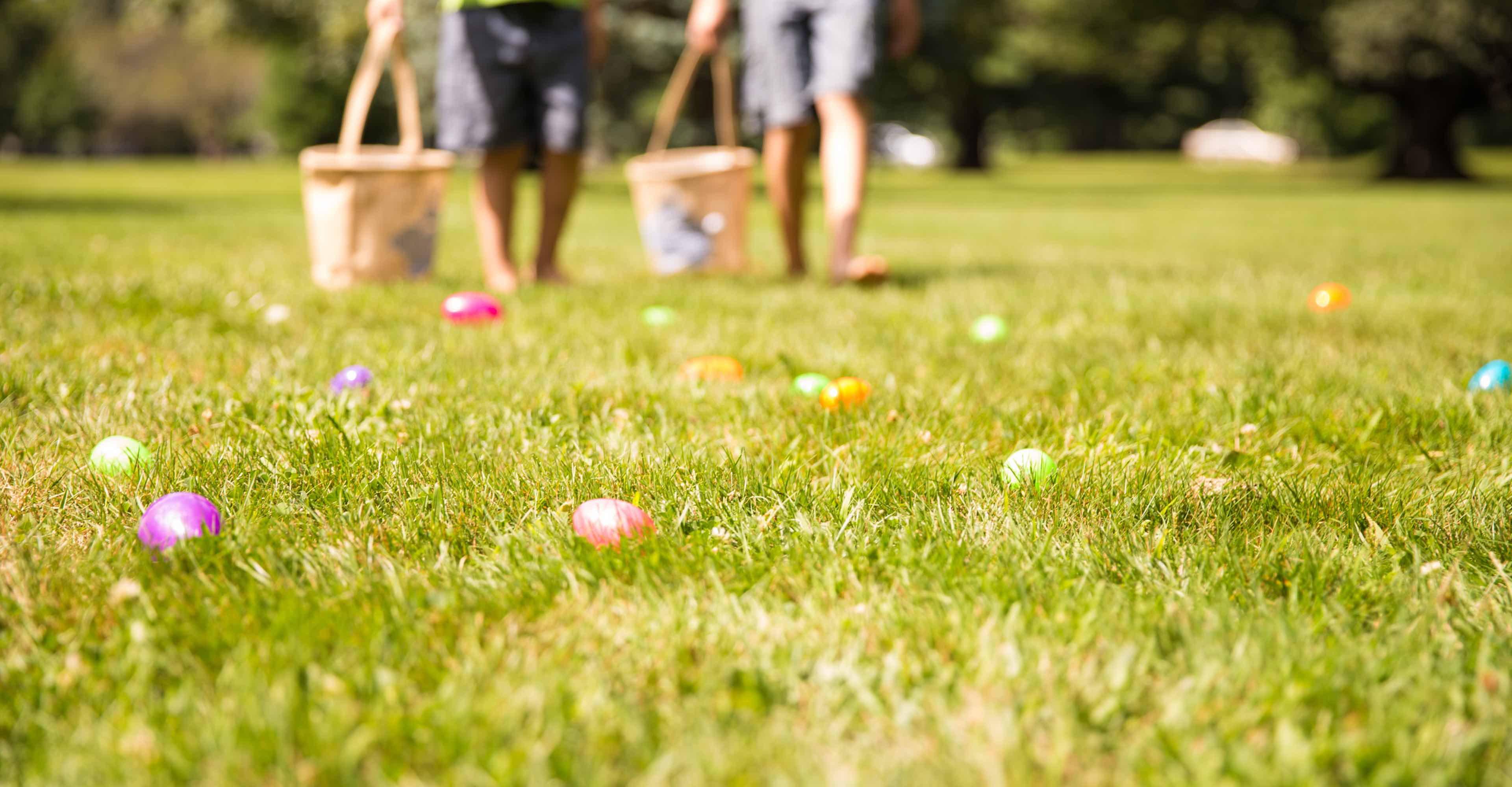 caccia uova pasqua Rigato_slider